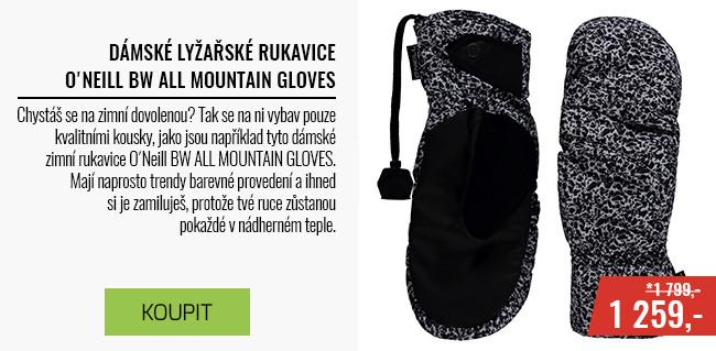 Dámské snowboardové/lyžarské rukavice
