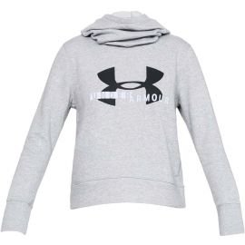 Under Armour COTTON FLEECE SPORTSTYLE LOGO HOODIE